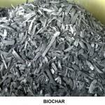 Biochar (2) - copia