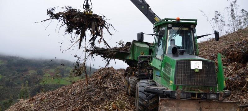 Visita al monte en busca de biomasa